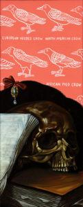 Drew Simpson: Schädel mit Krähe