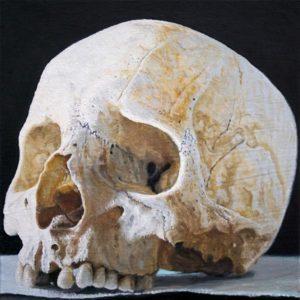 Joseas R. Helmes: Schädel Nr. 5