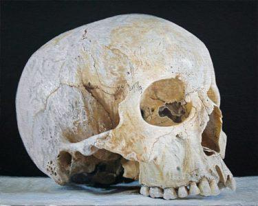 Joseas R. Helmes: Schädel Nr. 6