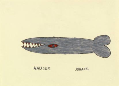Johann Hauser: Grauer Hai